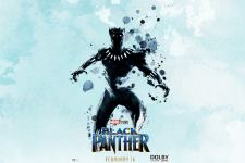 Black Panther Movie HD Wallpapers