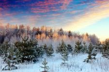 Winter Landscape HD Wallpapers