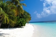 Palm Beach Maldives HD Wallpapers