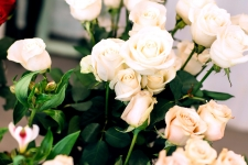 White Roses Wallpaper 4K